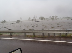 Anyone for some water.... wet season Feb 2014, just south west of Townsville